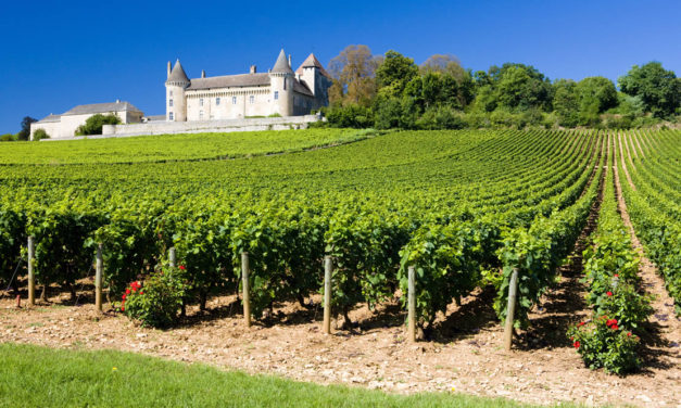 PRESIDENT'S CHOICE: Gastronomical Tour of Burgundy, Paris and Provence