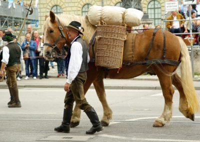Bavarian Festival